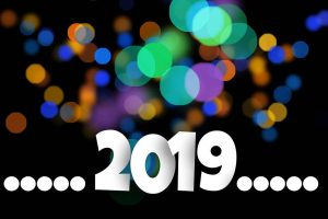 2019 in review (and why I'm excited for next year)