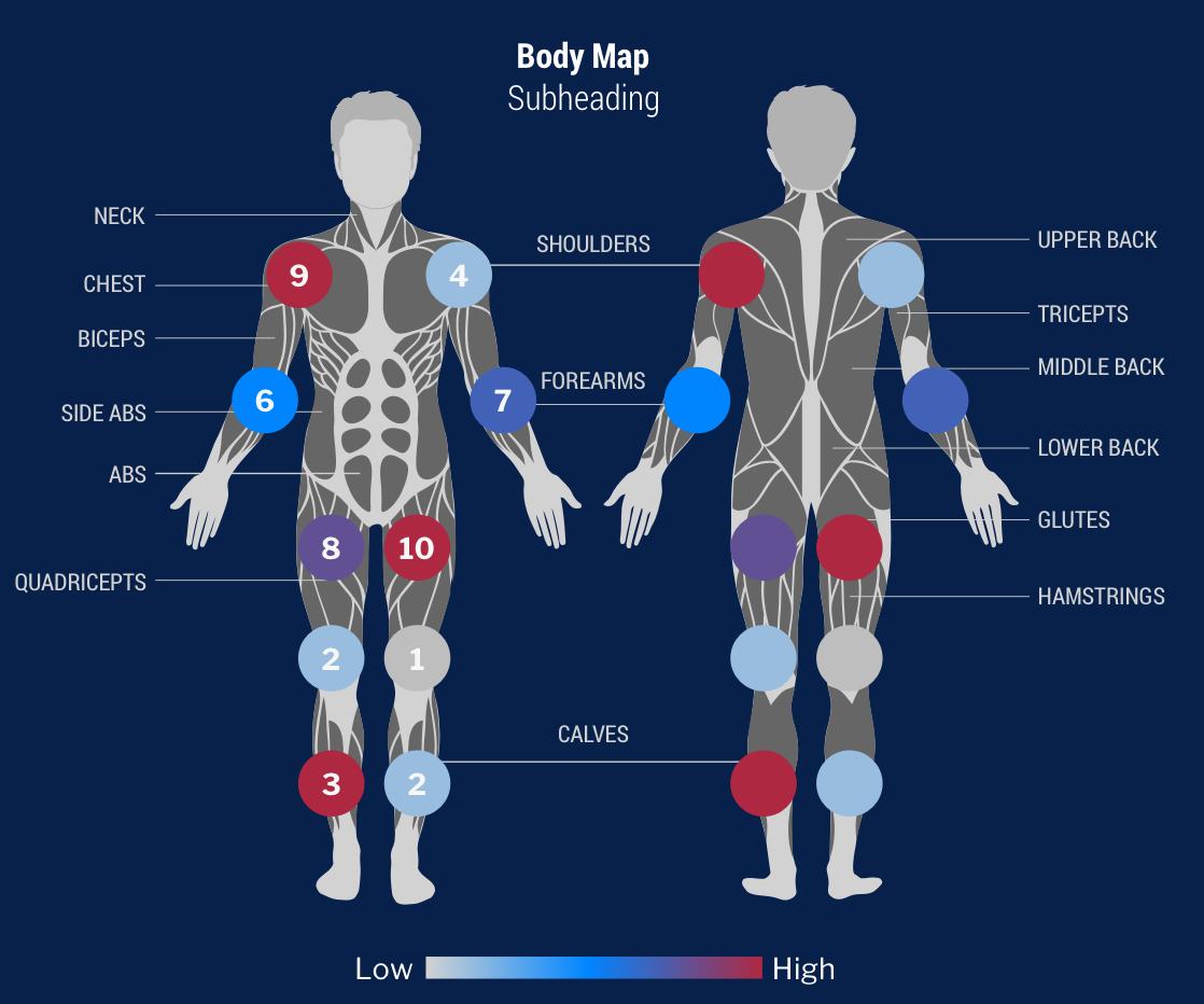 dashboard body map